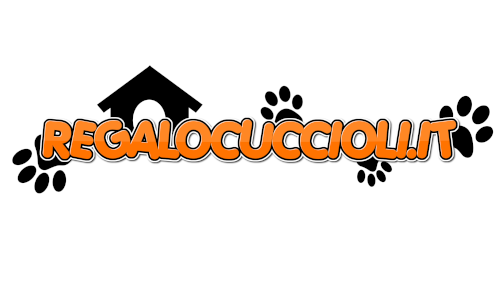 www.regalocuccioli.it