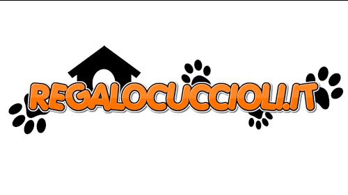 www.regalocuccioli.it